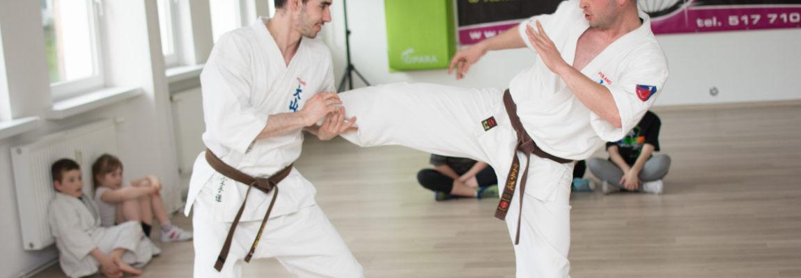 [Fotorelacja] Sport Up! – Oyama Karate
